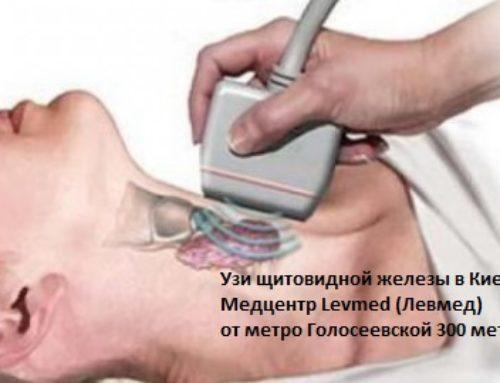 УЗИ щитовидной железы в Киеве