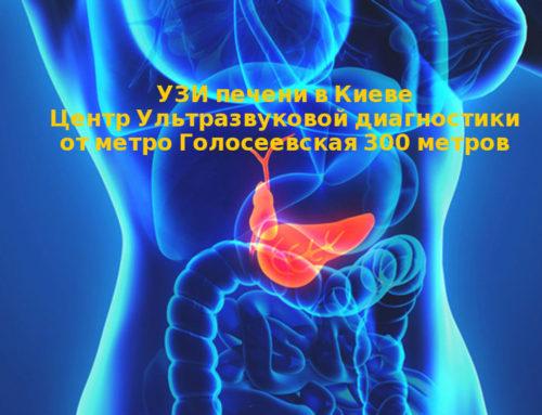 УЗИ печени в Киеве