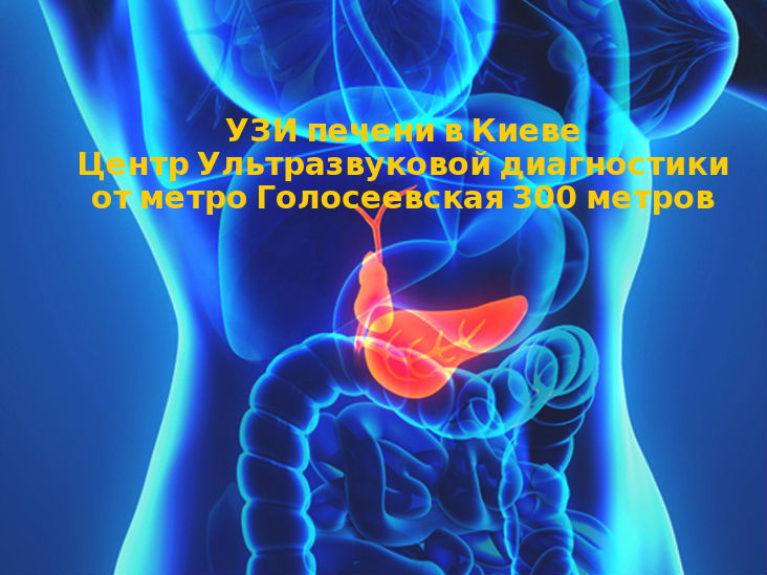 УЗИ печени в Голосеевском р-не г. Киева в Центре ультразвуковой диагностики